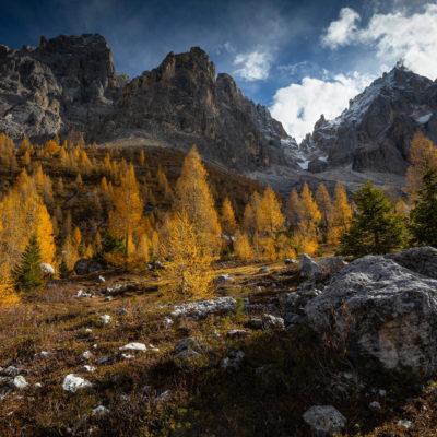 Passo Rolle, Dolomites